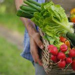 Gemüse und Obst Kiste